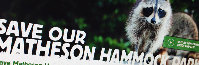 SAVE OUR MATHESON HAMMOCK PARK: A DIGITAL AND SOCIAL MEDIA ACTIVISM CAMPAIGN